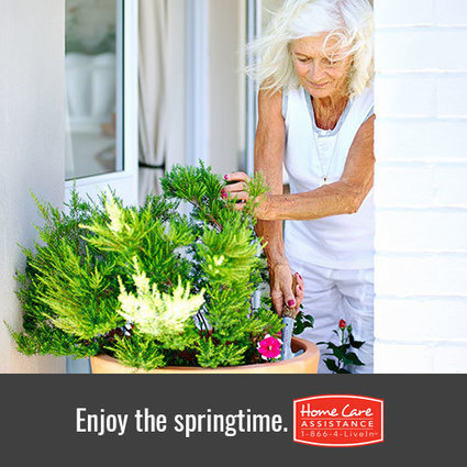 Senior Care: Tips for Surviving Allergy Season | Home Care Assistance Columbus | Scoop.it