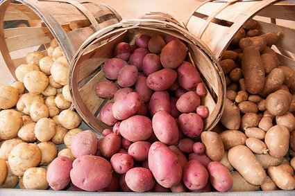 Time to Stop Dumping on #Potatoes - ConscienHealth | Nutrition Today | Scoop.it