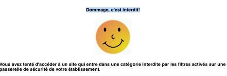 e-l@b - Former aux réseaux sociaux plutôt qu'interdire | Web 2.0 et société | Scoop.it