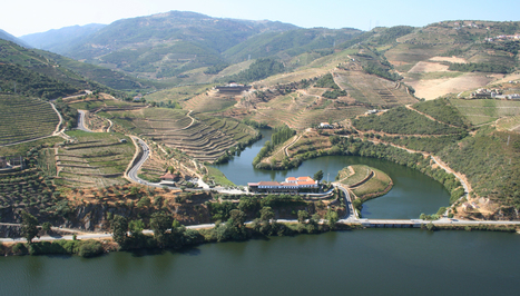 A Douro wine odyssey: the conclusion | The Douro Index | Scoop.it