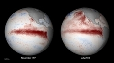 How This Year's El Niño Compares to the Past | Sustain Our Earth | Scoop.it