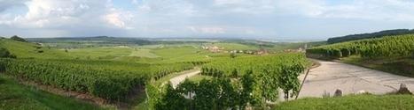 Le double rendez-vous des saveurs 2013 à Blienschwiller - Vitiblog | Actualités Alsace | Scoop.it