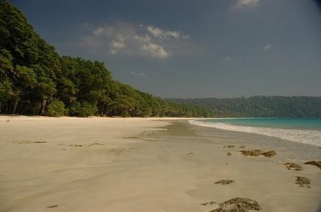 Explore o Mundo aquático nas Ilhas Andaman e Nicobar | viagem para india | Scoop.it