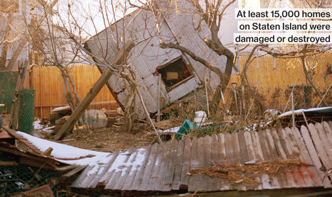 A Pet Food Store Fights to Survive Sandy | Hurricane Sandy Exploring Implications | Scoop.it