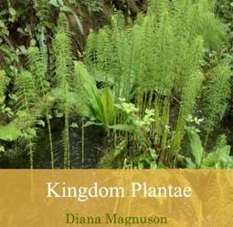 Kingdom Plantae | E-books on Biology | E-Books India | Scoop.it
