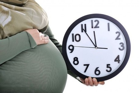 Premature Babies Not Linked To Fasting - Health News - redOrbit | REAL World Wellness | Scoop.it