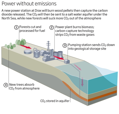 UK to build world's first power plant with negative emissions | New Scientist | Stretching our comfort zone | Scoop.it