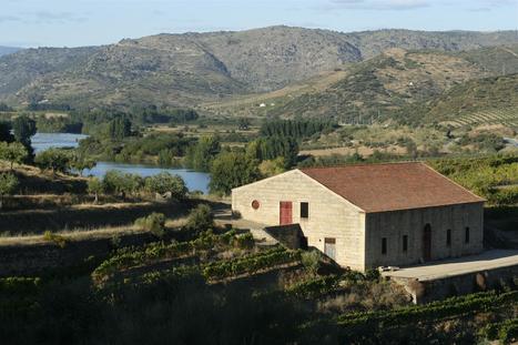 Quinta do Vale do Meão | The Douro Index | Scoop.it