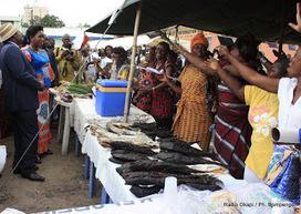 Mbandaka: fin de la foire des entrepreneuses | Radio Okapi | CONGOPOSITIF | Scoop.it