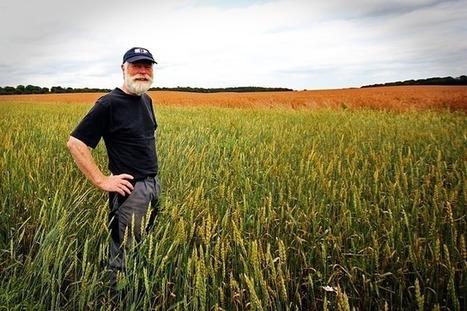 L'agro-écologie séduit de plus en plus les agriculteurs français   Le cri de la courgette... Cuisine biologique   Scoop.it