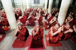 Analysis: How to reverse Buddhism's radical turn in Southeast Asia? - IRINnews.org | Buddha, Dhamma & Sangha | Scoop.it