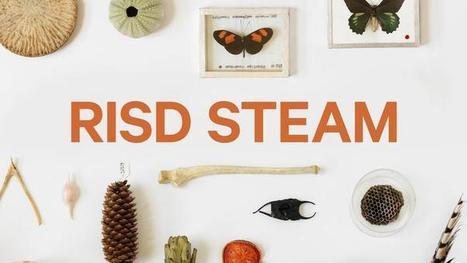 RISD STEAM–PBS Learning Media | art education | Scoop.it
