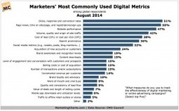Most Popular Digital Marketing and Online Advertising Metrics | Social WE Media | Scoop.it