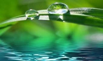 Mindfulness y orientación educativa | Orientación Educativa - Enlaces para mi P.L.E. | Scoop.it