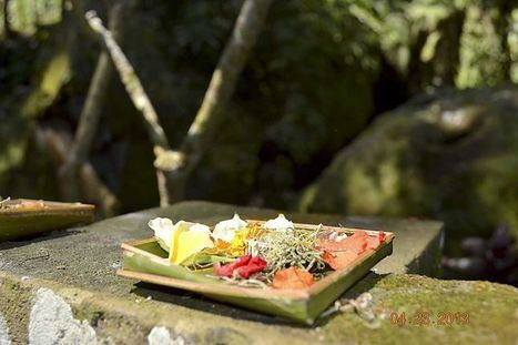 Find your Bali Ha'i | technology | Scoop.it