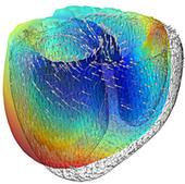 Taking Mathematics to Heart | Complex Insight  - Understanding our world | Scoop.it