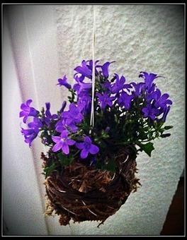 Initiales GG, une fille mais pas que...: DIY : ma version des fleurs suspendues au plafond! | Déco Design | Scoop.it