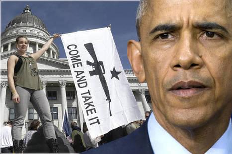 Federal Judge Defies Obama, Overturns His Unconstitutional Gun Ban | Liberty Revolution | Scoop.it