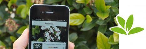 Pl@ntNet : une application qui identifie les végétaux !   agrophil   Scoop.it