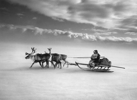 Sebastião Salgado in Siberia - in pictures | Reportage & Concerned Photography | Scoop.it