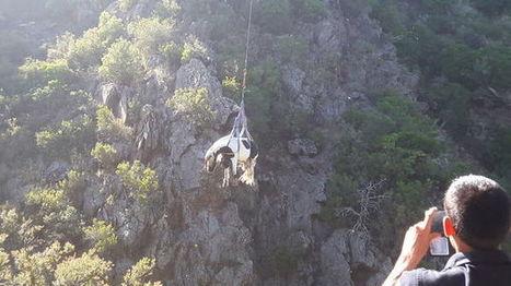 VIDÉO - Une jument sauvée par hélicoptère à Corbère | Cheval et Nature | Scoop.it