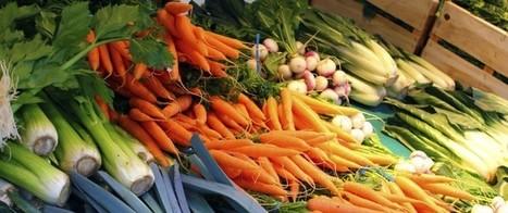 Les produits bios contiennent 60% d'antioxydants en plus | Bio, écologie et commerce équitable | Scoop.it
