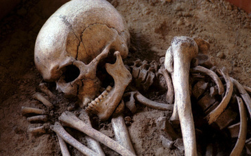 5 Prehistoric People Who Prove Our Ancestors Took Care of the Disabled | Hope | Scoop.it