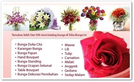 Beranda   toko bunga Jakarta   Scoop.it