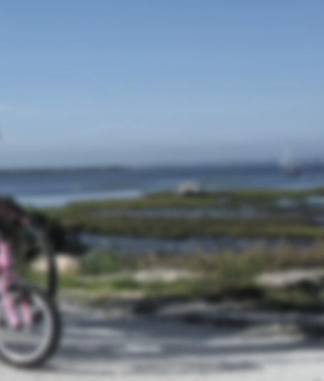 Bassin d'Arcachon… les vraies vacances, c'est ici ! | Bassin d'Arcachon…les vraies vacances - Site Officiel | MULTIMEDIA ET TOURISME | Scoop.it