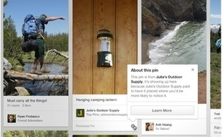 Pinterest and Ads Tie the Knot – Strategies to Prepare You for Promoted Pins | Pinterest | Scoop.it