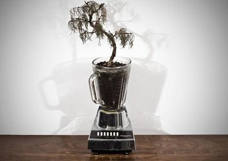 Blender plant pot | agriculture | Scoop.it
