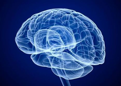 Your Brain Can Be Trained to Self-Regulate Negative Thinking | neuroscience | Scoop.it