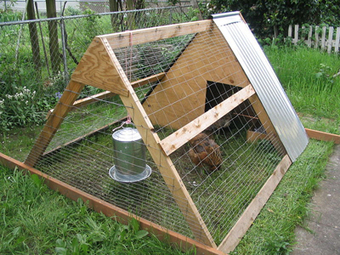 Chicken Tractor: Movable Chicken Pens | Permaculture and Sustainable Living Skills | Scoop.it