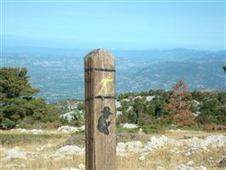 Sortie Ventoux, sur les traces de Jean-Henri Fabre - BEAUMONT DU VENTOUX - Détail festivités mois | vaucluse | Balades, randonnées, activités de pleine nature | Scoop.it