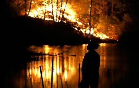 Forest Service at 'Tipping Point' Because of Wildfires | GarryRogers Biosphere News | Scoop.it