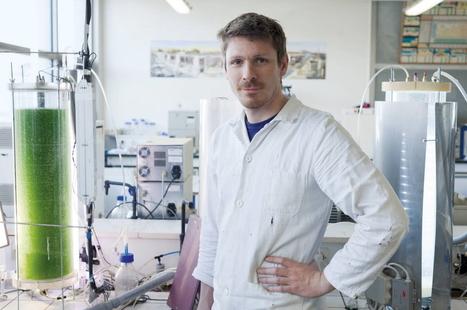 ingénieur(e) production dans les biotechnologies   Ingénieur   Scoop.it