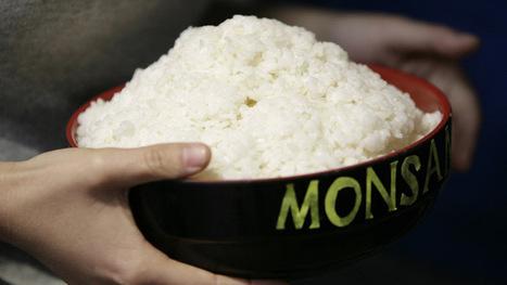 Monsanto announces huge profits despite public backlash — RT USA   Food issues   Scoop.it