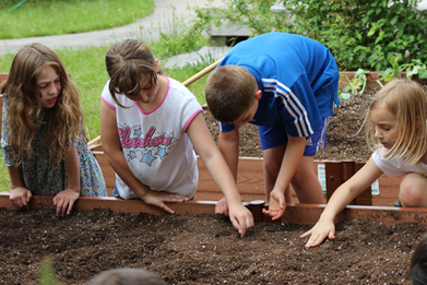 School gardens grow kids' physical activity levels | School Gardening Resources | Scoop.it