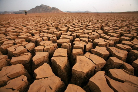 The Coming Hunger Wars: Heat, Drought, Rising Food Costs, and Global Unrest | real utopias | Scoop.it