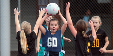 Sideline Champs: The taming of the netball crowds - Sport - NZ Herald News | 3.1 Sport is good for us….isn't it? | Scoop.it