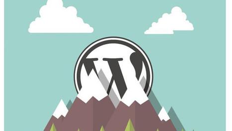 10 erreurs fréquentes à ne plus commettre avec WordPress | Outils CM, veille et SEO | Scoop.it