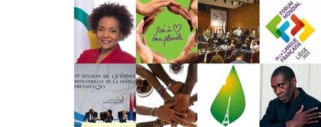 Organisation internationale de la Francophonie   Coopération internationale décentralisée   Scoop.it