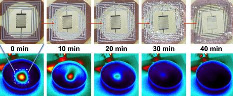 Wireless electronic implants deliver antibiotics, then harmlessly dissolve | Amazing Science | Scoop.it