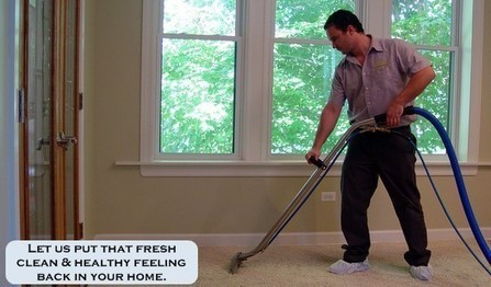 Best Chicago Carpet Cleaners for the Finest Results   Carpet Care   Scoop.it