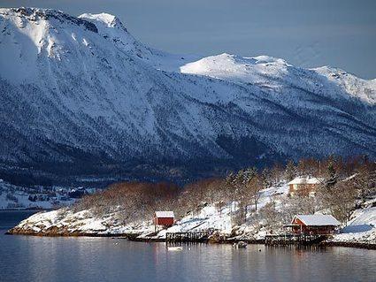 Hurtigruten : -25% pour partir en Norvège | Hurtigruten Arctique Antarctique | Scoop.it