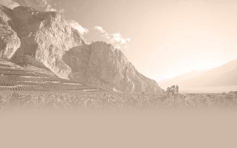 Les Etoiles du Valais 2015 | Oenotourisme | Scoop.it