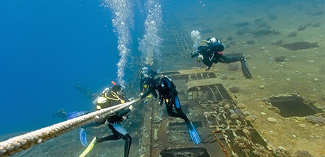 Living the Divemaster Life - Diary of a Divemistress - DIVE.in   All about water, the oceans, environmental issues   Scoop.it
