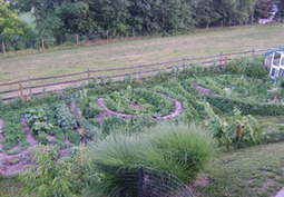 Introduction to Permaculture | Sustain Our Earth | Scoop.it