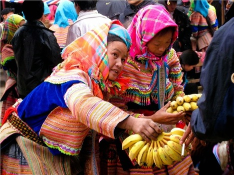 Sapa Trekking to Ethnic Markets and Villages 3 Days | Sapa Trekking Tours | Vietnam Holiday Packages | Scoop.it