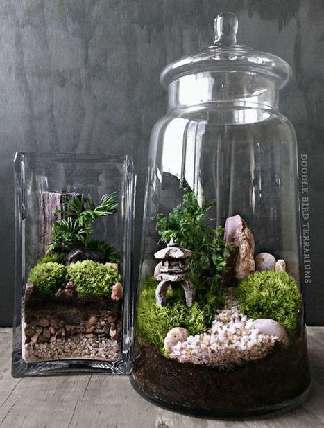 Custom Japanese Garden Terrarium with Miniature Path, Pagoda, Tree in a Large Apothecary Jar - Gardening Pleasures   Gardening   Scoop.it
